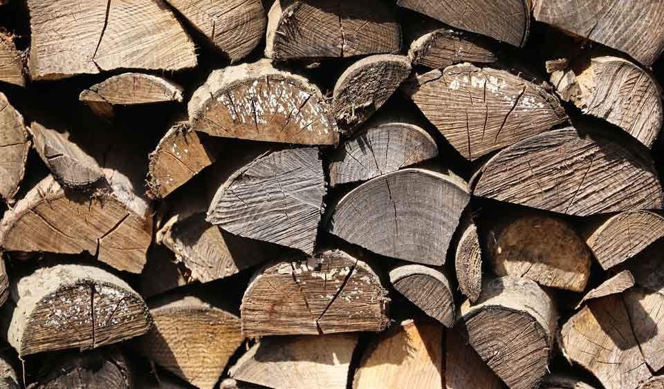 cate kg are un metru cub de lemn